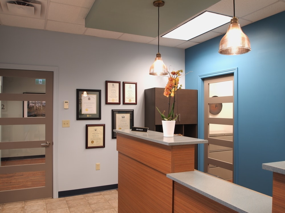 Dentist's Reception Area